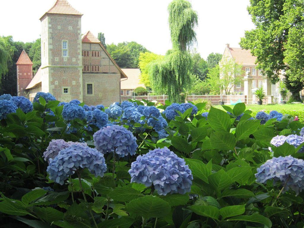 Burg Hülshoff Burgpark